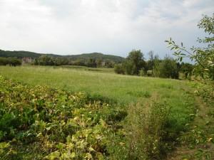 Улюблене місце Семенового дитинства - гори Кучугури